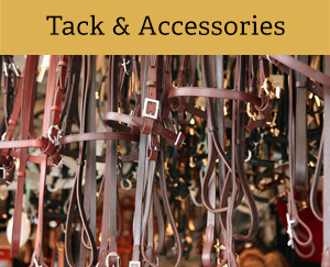 Tack & Accessories - Oldcourt Saddlery